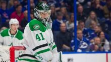 Dallas Stars Daily Links: Goaltending Depth