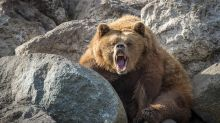 Dow Jones Sinks Nearly 1,500 Points For Week; 3 Reasons Why This Bear Market Could Get Worse