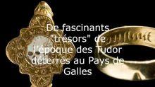 Trésors du Pays de Galles, plateforme métabolique et Notre-Dame de Paris : l'actu des sciences en ultrabrèves