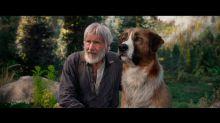 Tráiler | Harrison Ford vuelve a la aventura con nuevo compañero: un perro en CGI