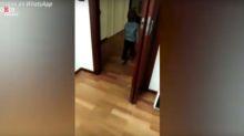 """""""Quiero salir, no aguanto más"""", el grito desesperado de este niño italiano representa el de millones"""