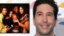 Friends' David Schwimmer Apologizes for Diversity Comments: 'I Didn't Mean to Imply Living Single Hadn't Existed'