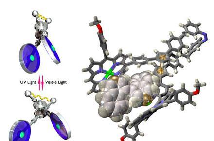 Scientists forge molecular-sized scissors
