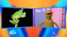 Kermit Addresses Newly Discovered Frog that Looks Like Him
