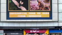WHO team in China for virus origin probe