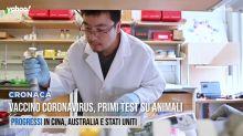Vaccino Coronavirus, primi test su animali