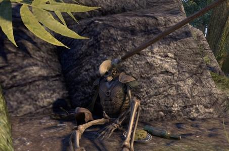 The Elder Scrolls Online asks players for a tale of the dead