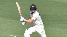 Marsh brothers find form for WA in Shield
