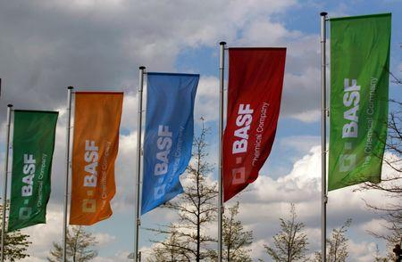 FILE PHOTO: Flags of the German chemical company BASF are pictured in Monheim, Germany April 20, 2012. REUTERS/Ina Fassbender/File Photo