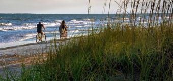Woman killed in apparent gator attack on Hilton Head