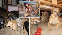 Woman brings 97 dogs into her home to protect them from Hurricane Dorian