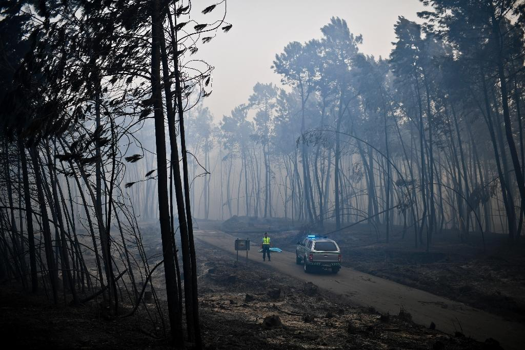 A police officer stands by a covered body, one of over 60 victims of Portugal's wildfires, many killed while fleeing in their cars (AFP Photo/PATRICIA DE MELO MOREIRA)