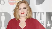 Adele halts Sydney show to check on injured fan who collapsed in the crowd