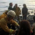 Woman found 7 days after California cliff crash