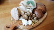 Breaking news: You've probably been cooking your mushrooms all wrong