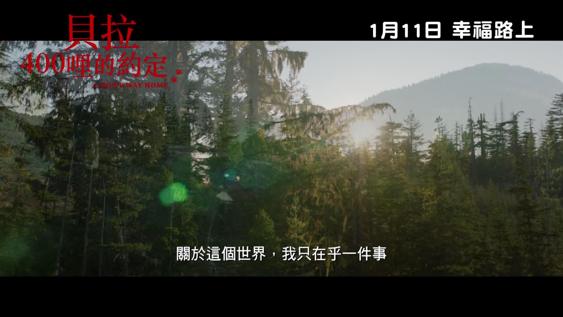《貝拉400哩的約定》中文預告