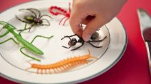 Grubs up: school children in Wales are being served bugs for lunch