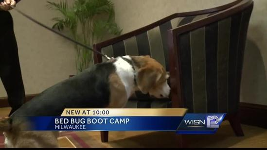 Milwaukee businesses attend bed bug boot camp