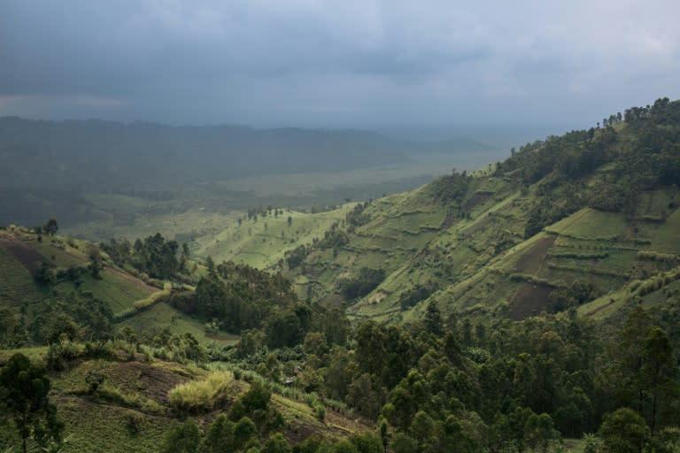 Virunga was inaugurated in 1925 (AFP Photo/ALEXIS HUGUET)