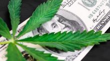 Marijuana Stock The Green Organic Dutchman Files for Listing on Nasdaq