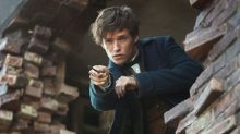 Fantastic Beasts 2 reveals open casting call for young Newt