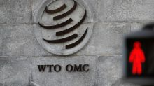 Higher trade barriers hitting jobs and growth -  WTO
