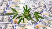 Is Canopy Growth the Google of Weed?