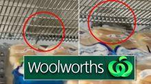 Woolworths customer shocked to see huge rat running along shelf