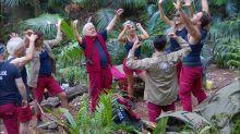 """Tag 2 im Dschungelcamp: """"An euch haben wir bislang viel Freude"""""""