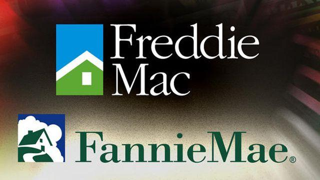 What to Cut: Privatizing Fannie and Freddie?