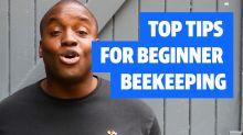 Bee Happy: Top tips for beginner beekeepers