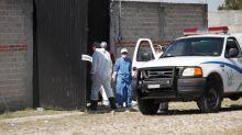 Halladas 15 bolsas con al menos seis cadáveres en una finca en México
