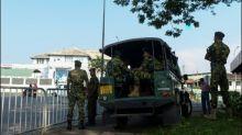 Schmugglerkatze flieht aus Hochsicherheitsgefängnis in Sri Lanka
