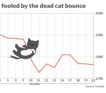 Watch out for 'dead cat bounce' in stocks because there's more pain ahead: Morgan Stanley's Wilson