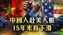 中國人赴美人數15年來首下滑