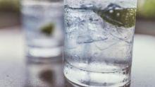 10 Best European gins