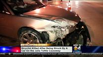 Cyclist Struck, Killed On Julia Tuttle Causeway