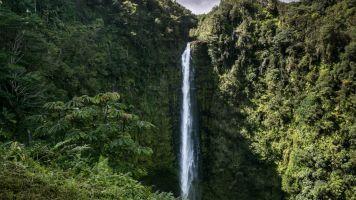 Wasserfall-Sturz kostete Wanderin fast das Leben - Video hielt alles fest