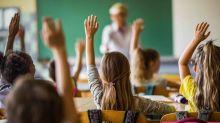 Selbstanzeige! Berliner Lehrer machen der AfD einen Strich durch die Rechnung