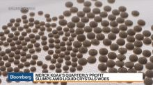Deleveraging Still Remains a Top Priority, Says Merck KGaA's CFO