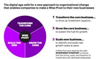 The Accenture Wise Pivot C-level survey: Successful Companies Pivot to the Future by Revitalising -- Not Neglecting -- Their Core Businesses