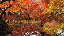 12 destinos para disfrutar los mejores colores del otoño