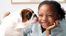 Should Your Family Get A Dog? How To Know If Now Is The Time For A Pet