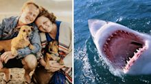 Fears groom was attacked by great white shark before wedding