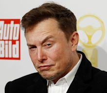 Tesla was ordered to stop work on its $4 billion Berlin Gigafactory over environmental concerns