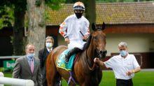 Talking Horses: BHA ban Phoenix Thoroughbreds from British racing