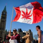 Canada's legalisation of cannabis will help the world to understand what the alternative to the current situation is
