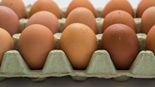 Cal-Maine Foods Drops Dividend as Egg Prices Plunge
