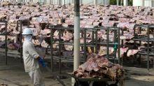 China deve habilitar mais plantas do Brasil para exportação de carnes, diz secretário