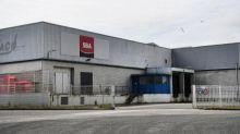 Finistère : mis en cause par L214, l'abattoir de truies de Briec ferme partiellement